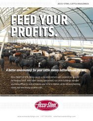 A better environment for your cattle means better ... - Accu-Steel