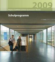 ist unser Schulprogramm Stand: 2009 (PDF) - Lichtwer-Gymnasium ...