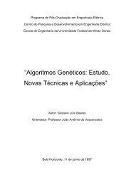 Algoritmos Genéticos: Estudo, Novas Técnicas e Aplicações