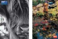 ANIMALS - Popular Photography