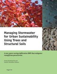 Trees and Structural Soils - City of Santa Rosa