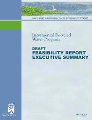 Draft Feasibility Report Executive Summary - City of Santa Rosa