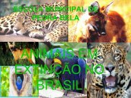 Profa. Daniele (Kits Fauna, DVDs) - Associação Mata Ciliar