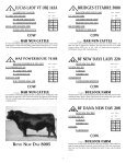 To All Beef Producers - angus beef cattle sales by the southwest ... - Page 2