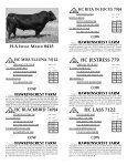 To All Beef Producers - angus beef cattle sales by the southwest ... - Page 6