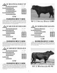 To All Beef Producers - angus beef cattle sales by the southwest ... - Page 7