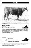 Breeding Cattle sale - Cowbuyer - Page 7