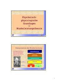 Physikalisch- physiologische Grundlagen Muskelleistungstheorie