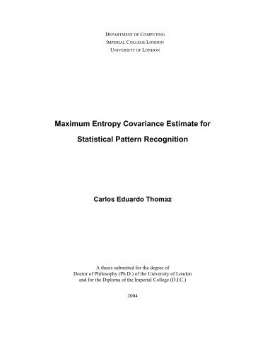 Maximum Entropy Covariance Estimate for Statistical Pattern ... - Fei