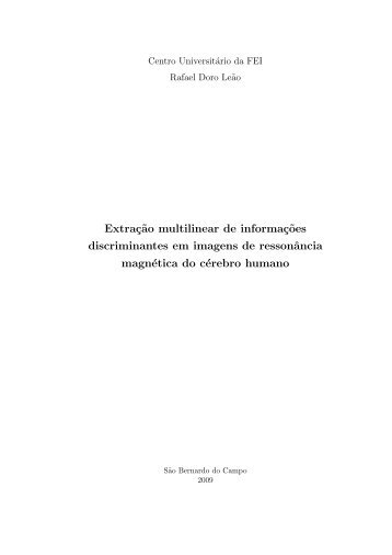 M.Sc. thesis - Fei