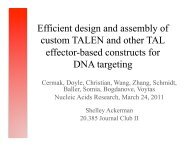 Efficient design and assembly of custom TALEN ... - OpenWetWare