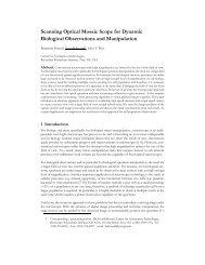 Scanning Optical Mosaic Scope for Dynamic Biological - Rensselaer ...