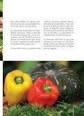 Recetas para las raciones del Programa Mundial de Alimentos - Page 5