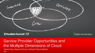 Service Provider Opportunities and the Multiple ... - Parallels