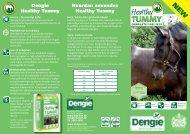 Danish Healthy Tummy leaflet(1) - equistro.dk