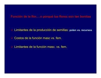 Función de la flor - Mendoza CONICET