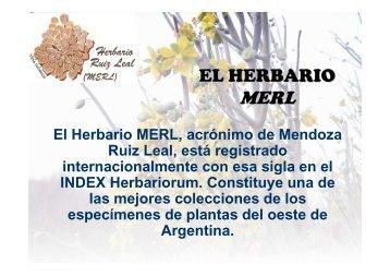 EL HERBARIO MERL - Mendoza CONICET