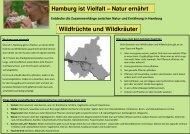 Wildfrüchte und Wildkräuter Hamburg ist Vielfalt - ANU Hamburg