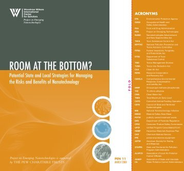 ROOM AT THE BOTTOM? - Project on Emerging Nanotechnologies
