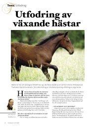 Utfodring av växande hästar - ASVT