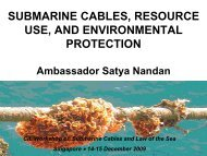 submarine cables, resource use, and environmental protection