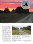 ET FORSVAR FOR FUGLE OG NATUR - Page 4