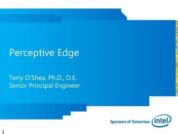 Perceptive Edge - Intel