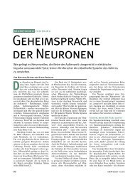 GEHEIMSpRACHE DER NEURONEN