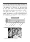 IMUNOPATOMORFOLOGINIAI GALVIJŲ TUBERKULIOZ S POKY IAI ... - Page 3