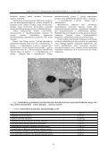 IMUNOPATOMORFOLOGINIAI GALVIJŲ TUBERKULIOZ S POKY IAI ... - Page 5