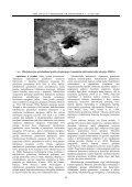 IMUNOPATOMORFOLOGINIAI GALVIJŲ TUBERKULIOZ S POKY IAI ... - Page 6