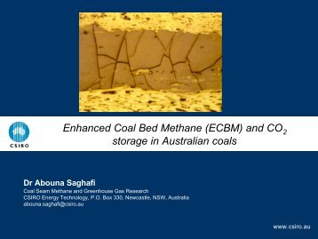 Enhanced Coal Bed Methane (ECBM) - Australian Institute of Energy