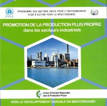 PROMOTION DE LA PRODUCTION PLUS PROPRE dans les ...