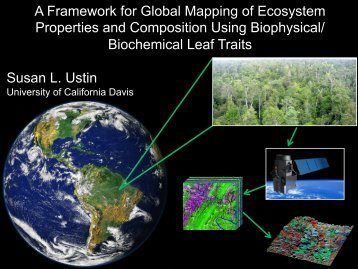 Biochemical Leaf Traits Susan L. Ustin - NASA