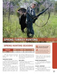 spring turkey hunting - Kentucky Department of Fish and Wildlife ...