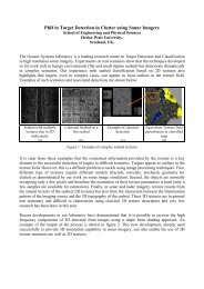 diver detection sonar and target strength