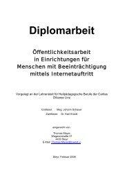 Diplomarbeit - Liwest