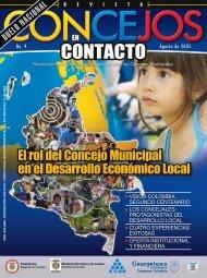 Rol del Concejo Municipal en el desarrollo Económico - Centro de ...