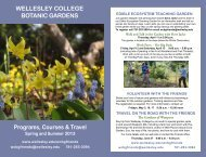 2013 Spring-Summer Program Brochure - Wellesley College