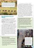 Lesgids | Jongere lezers (leeftijd 8-10 jaar) - International Fund for ... - Page 5
