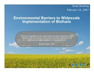 Environmental Barriers to Widescale Implementation of Biofuels