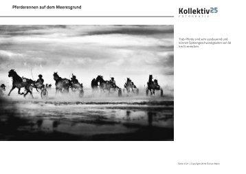 Pferderennen auf dem Meeresgrund - Kollektiv25