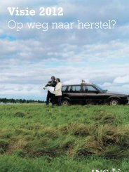 Visie 2012 Op weg naar herstel? - RTL.nl