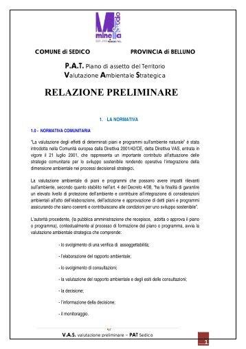 RELAZIONE PRELIMINARE - Comune di Sedico
