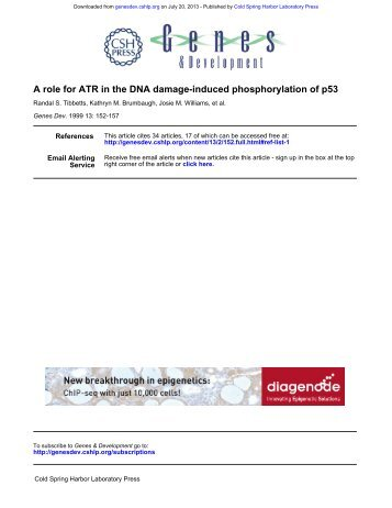 A role for ATR in the DNA damage - Genes & Development