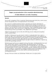 Rapport om gennemførelsen af den europæiske ... - Europa
