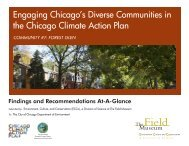 Engaging Chicago's Diverse Communities in the Chicago Climate ...