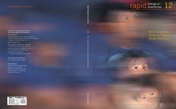 12 rapid