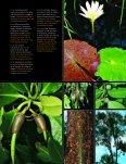 CUBA: Zapata - The Field Museum - Page 4