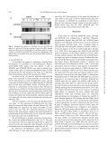 Two GLOBOSA-Like Genes are Expressed in Second and Third ... - Page 4
